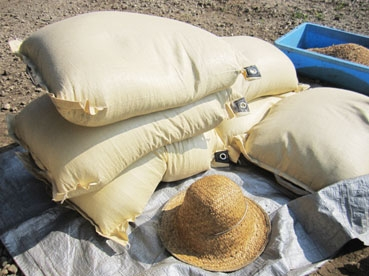 小麦袋110803.jpg
