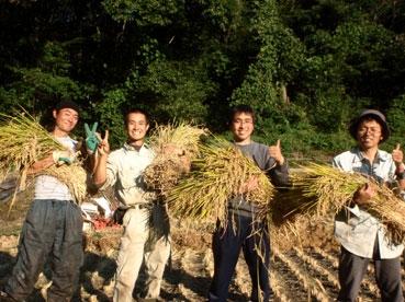 稲を持ってピース111009.jpg