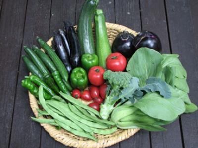 野菜セット120402.jpg